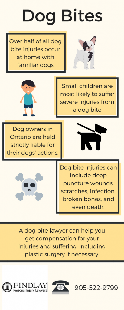 dog-bite-infographic-410x1024.png